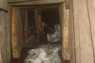 Border Patrol uncovers cross border tunnel