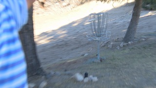 New disc golf course, first of its kind in town