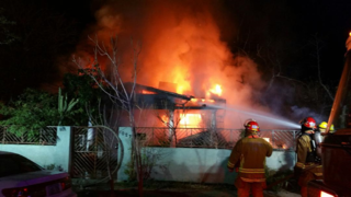 Woman and dogs survive fully involved house fire