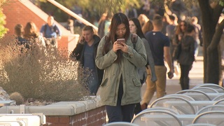 Distracted texters walk into danger