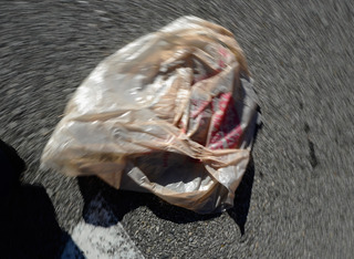 House gives tenative OK to plastic bag ban bill