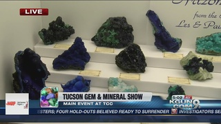 Tucson's largest gem show kicks off today