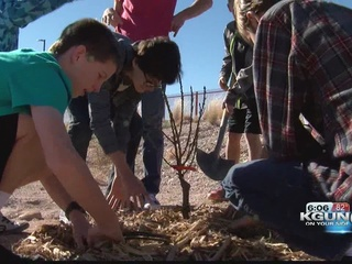 Vail students plant trees for the community