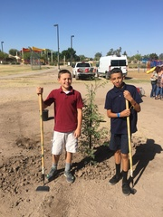 Students saving the earth one tree at a time