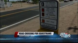 Horse traffic signal installed on Northwest side