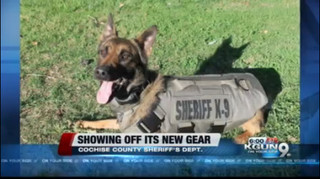Cochise Co. Sheriff K-9 receives new armor