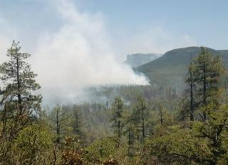 Juniper Fire burning in Tanto National Forest