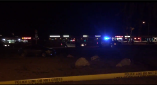 Pedestrian struck and killed by car
