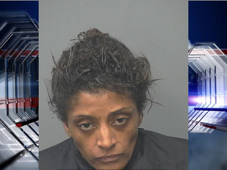 SV woman arrested on manslaughter charges
