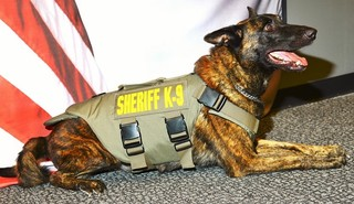Sheriff's K9 receives body armor