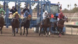 Horse racing to continue at Rillito Park