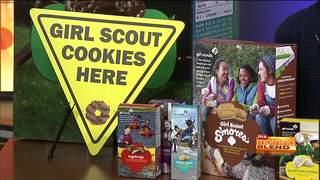 Girl Scouts Of Southern Arizona 01/19/17