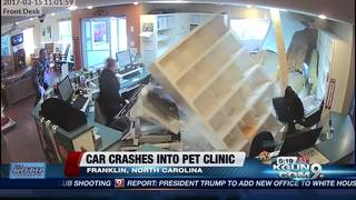Car crashes into N.C. pet clinic