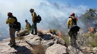Mirador Fire near Sasabe torches 250 acres