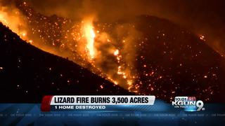 Lizard Fire forces more than 25 home evacuations