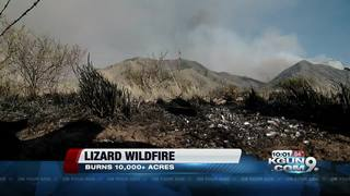 Lizard Fire containment at 15 percent