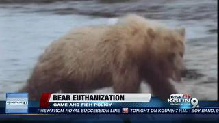 Game and Fish takes steps before killing bears