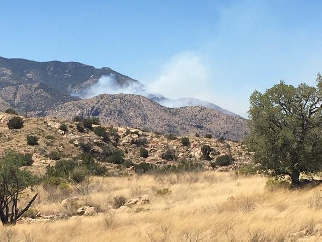 Firefighters Making Progress on Burro Fire