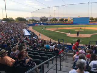 Pecos League Play: The life of a Tucson Saguaro
