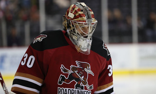 Langhamer to reuturn to Coyotes/Roadrunners