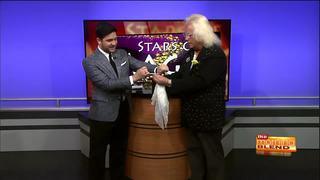 Stars of Magic Show: George Franzen