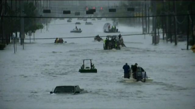 Sandra Bullock donates $1M for Harvey relief