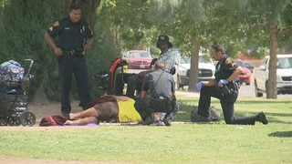 TPD tries new tactics to boost park safety