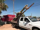 Amazon returns giant cactus from Tucson