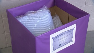 Pillow donation drive for Tucson shelter