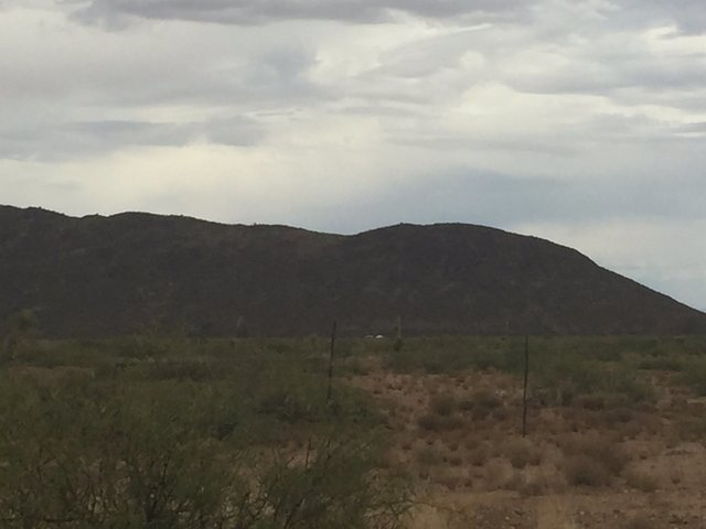 Pilot dies in plane crash near Willcox