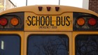 Bus driver accused of letting kids drive pleads