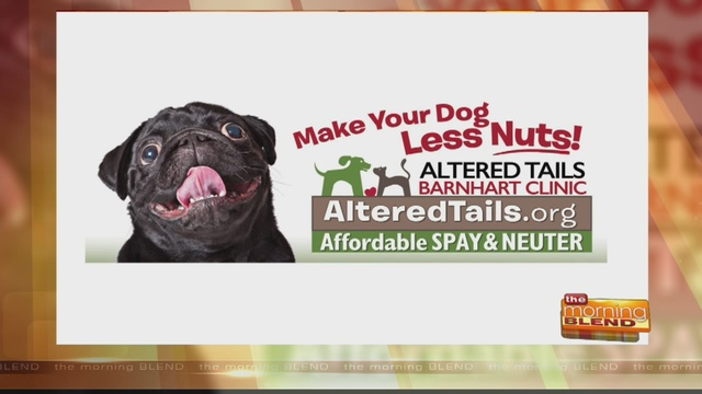 Altered Tails A 501c3 Organization Is Arizonas Largest Spay Neuter Clinic Specializing In High Quality Low Cost Services