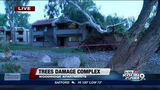Microburst damages eastside apartment