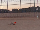 Drone carrying drugs crashes at Arizona prison