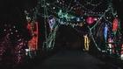Zoo Lights at Reid Park Zoo kicks off