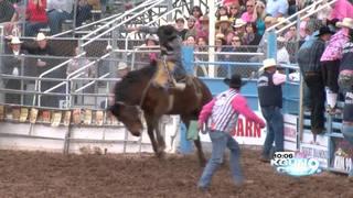 Rodeo families talk lifestyle, Tucson Rodeo