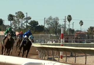 University of Arizona Days at Rillito Racetrack