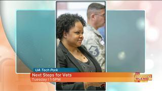Next Steps for Vets to provide career guidance