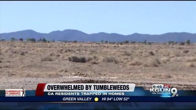 California neighborhood inundated by tumbleweeds