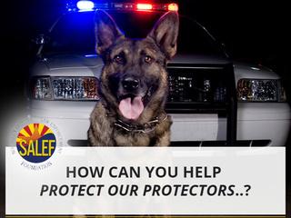 The Southern Arizona Law Enforcement Foundation