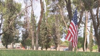 American flags to honor fallen veterans