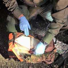 Border Patrol seizes 30 pounds of meth